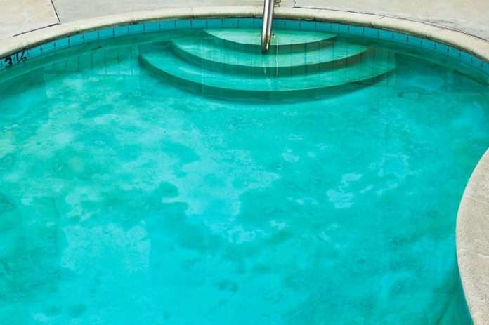 cleaning algae from a pool thriftyfun