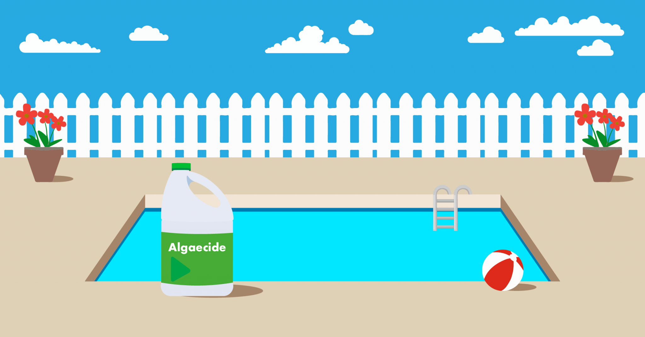 How Long to Wait to Add Algaecide After Shock