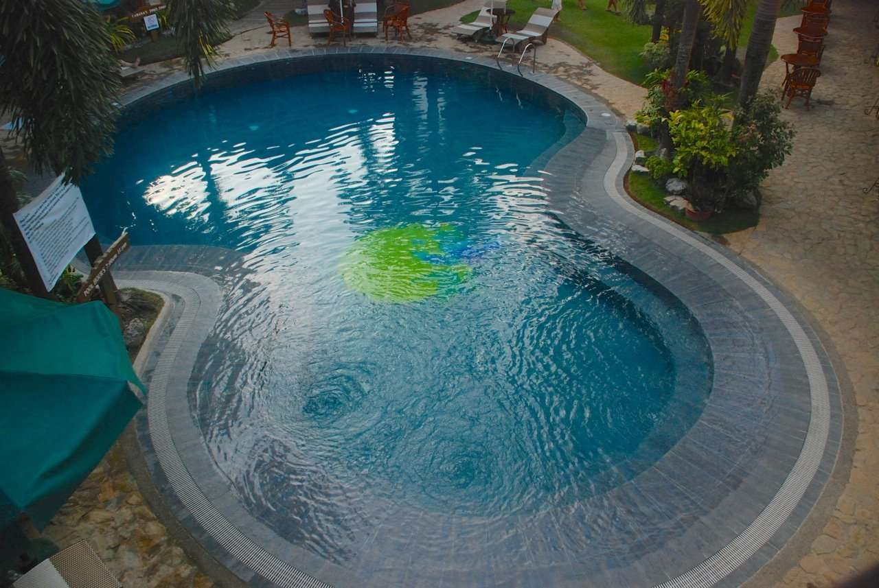 How to Prevent Algae Growth in Your Swimming Pool ...